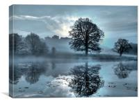 dark misty sunrise at a local pond