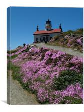 Battery Point Lighthouse, Canvas Print