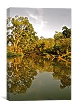 The Moyar River being reflective, Canvas Print