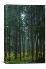 Blue Forest, Canvas Print