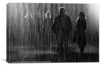 Rain Room, Canvas Print