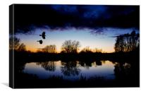 Flying crows,sunset, Canvas Print