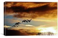 Homeward bound , sunset, Canvas Print