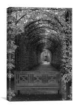 Alnwick Castle Gardens, Canvas Print