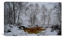 Cheshire snow drift, Canvas Print