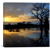 Silhouette Flooding Reflection, Canvas Print