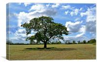 green tree field, Canvas Print