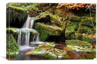 Waterfall Green Moss, Canvas Print