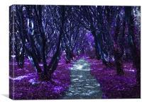 A Lilac Coloured Walk, Canvas Print