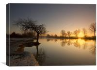 Spade Oak Reach Sunrise, Canvas Print