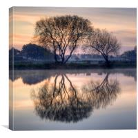 Reflection, Canvas Print