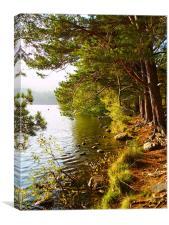 Loch an Eilien, Canvas Print