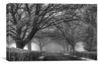 Misty Road, Canvas Print