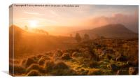 Dawn at the Roaches, Canvas Print
