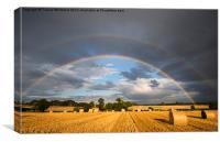 Framed by a Rainbow , Canvas Print