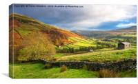 Autumn in Swaledale , Canvas Print