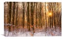 When Autumn Meets Winter , Canvas Print