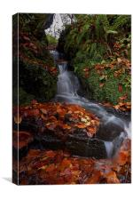 Waterfall In The Woods, Canvas Print