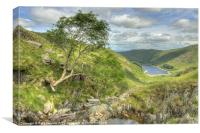 Haweswater from Small Water Beck, Canvas Print