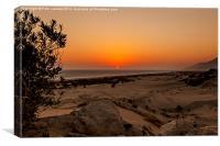 Patara Beach Turkey, Canvas Print