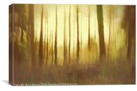 Magical Woodland Shining Light, Canvas Print