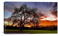 Sunrise on our field, Canvas Print