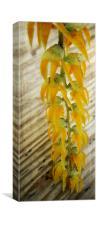 Oriental Yellow, Canvas Print