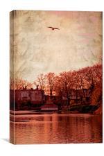 Bird in the sky.., Canvas Print