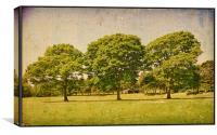 Beautiful Green Trees!!, Canvas Print