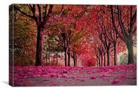 Autumn beauty.., Canvas Print