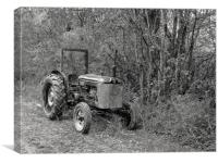 Little ol tractor, Canvas Print