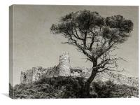 Welsh ruin, Canvas Print