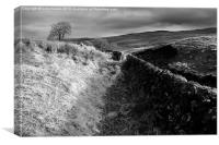 Dumphries & Galloway, Canvas Print