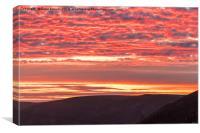 Newgate Beach Sunset, Canvas Print