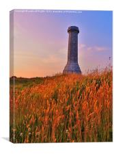THE HARDY MONUMENT AT DUSK, Canvas Print