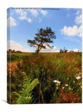 WILD FLOWERS AND TREE PORTESHAM, Canvas Print