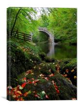 HOLNE BRIDGE DARTMOOR DEVON, Canvas Print