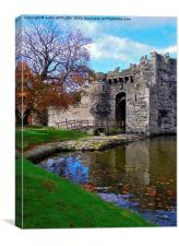 FALLING LEAVES AT BEAUMARIS CASTLE, Canvas Print