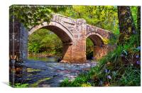 NEW BRIDGE DARTMOOR, Canvas Print