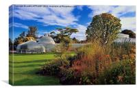 Kibble Palace Botanic Gardens Glasgow , Canvas Print
