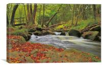 River Fowey at Golitha Falls, Canvas Print