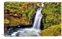 Ceunant Mawr Waterfall, Canvas Print