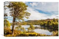 Loch Affric, Canvas Print