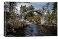 Pack Horse Bridge Carrbridge, Canvas Print