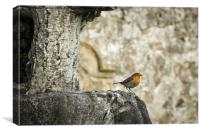 Cemetery Visitor, Canvas Print