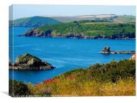 South Devon Coast                          , Canvas Print
