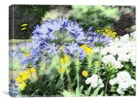 Flowers in the Garden, Canvas Print