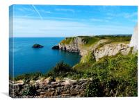 The Beauty of Devon                 , Canvas Print