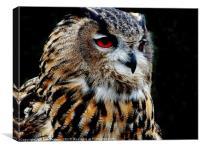 Eurasian Eagle-Owl, Canvas Print