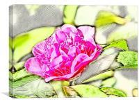 Rose Art, Canvas Print